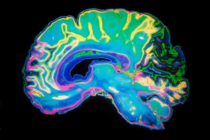 Aplicação das técnicas de Programação Neurolinguística (PNL) em Odontologia